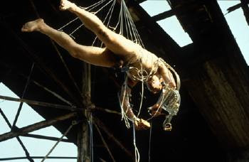 stelarc the last suspension
